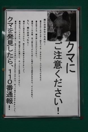 20161113_17